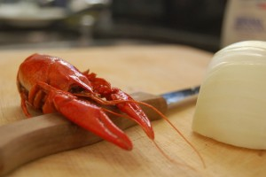 langoustine-waiting-for-the-pan-1322706-639x424
