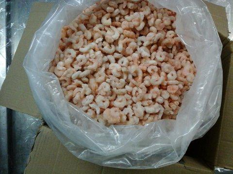 Crevettes décortiquées cuites ou blanchies